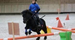 © Anchor Equitation