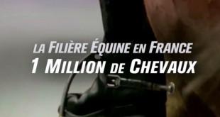 L'UNIC a réalisé un nouveau clip de promotion de la filière équine française (© UNIC / La Factory / Equidia)