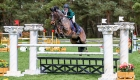 © Alleaume Gilles 2016. BIP Fontainebleau 2016. Prix Free Jump. Ruairi AYLWARD (IRL). COPPENAGH TOM SPARROW.