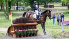 © Alleaume Gilles 2016. Saumur Complet CCI***. Cross-Country. ODT GHAREEB. Oliver TOWNEND (GBR).