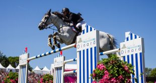 Photographie Eric KNOLL. Jumping International de Dinard 2016. CSI 5*. Jerome GUERY (BEL). PAPILLON Z